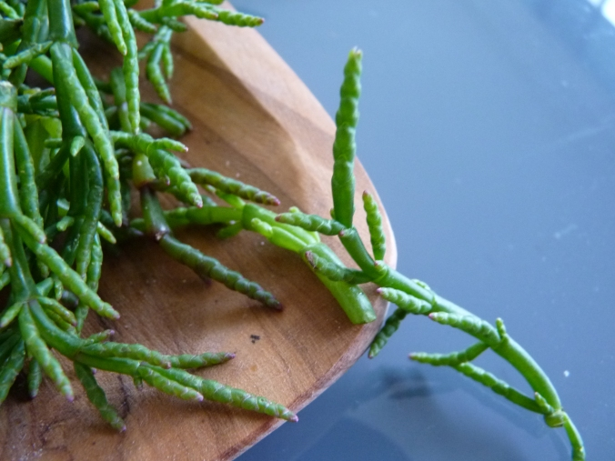 der Seespargel kann roh oder kurz gedünstet gegessen werden. hat einen leicht salzigen Geschmack und ist knackig.