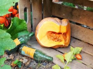 der pumpkin wartet auf den Pie