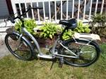 evo-bike